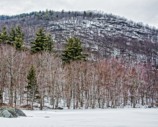 Bald Mountain from Willard Pond