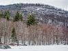Bald Mountain from Willard Pond