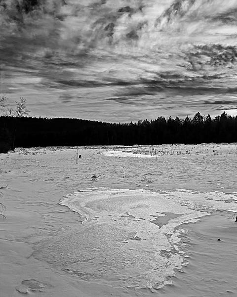 Beaver Meadow in Winter