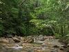 The Pemi, Upstream of the Basin