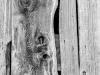 Barn Board #5