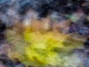 Autumnal Abstract 2015 - #3