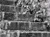 Stone Steps #1