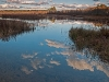 Mud Pond #1 (Peterson WMA)