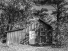 The Leopold Shack