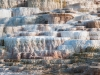 Mammoth Hot Springs #3