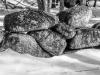 Stone Wall Detail #1