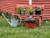 Springtime Bench