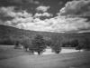 Farm Pond (Bear Hill Farm, Hillsborough, NH)
