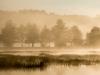 Foggy Sunrise, Gregg Lake