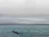 Lakeshore #15