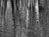 Contoocook Reflection #1