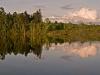 Androscoggin River at Sunset (Dummer, NH)
