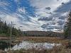Beaver Swamp in Late Autumn