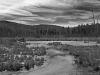 04 - Beaver Meadow in Winter