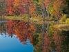 07 - Autumn Foliage Reflected