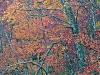 08 - Autumn Foliage (detail)